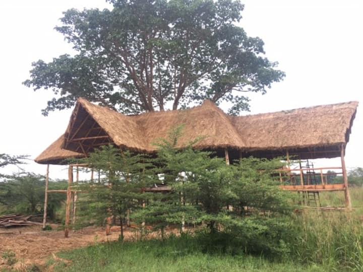 Climbing Lion Treehouse