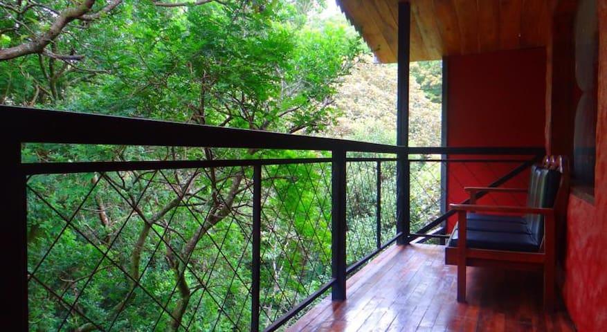 Manakin Lodge, Monteverde
