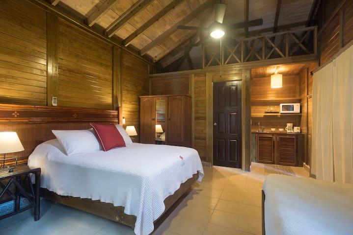 Cama queen + cama individual, baño privado con ducha y agua caliente, kitcheneta equipada con refrigerador,  y acceso a terraza - balcón.