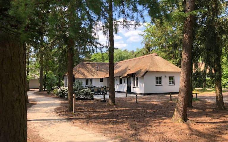 Eekhoorn - prachtig familiehuis 16 personen