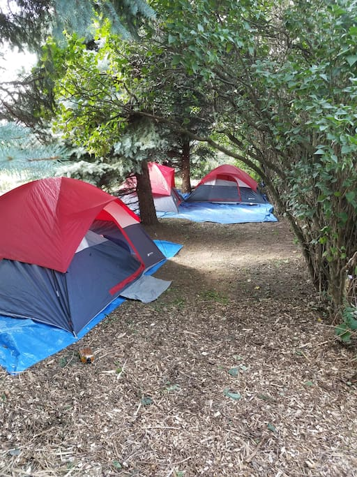 Aaron's Grove:  Three 4man tents--reserve them all for your party!