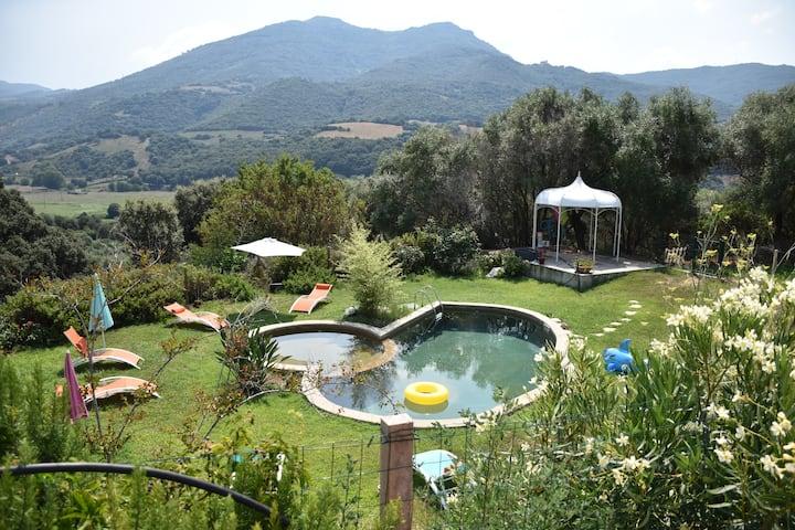 Chambre Olmeto sud Corse. Piscine, table d'hôte.