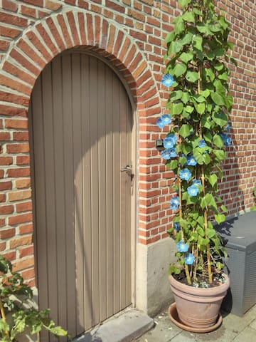 nice place in a quiet neighbourhood close to park - Mechelen - Apartamento