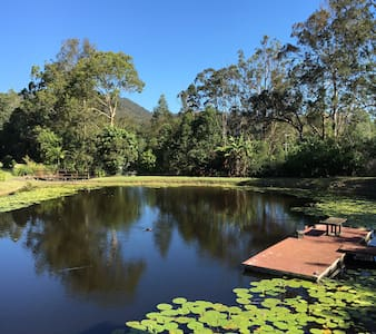 Peaceful country cottage on private dam - Mudgeeraba - Guesthouse