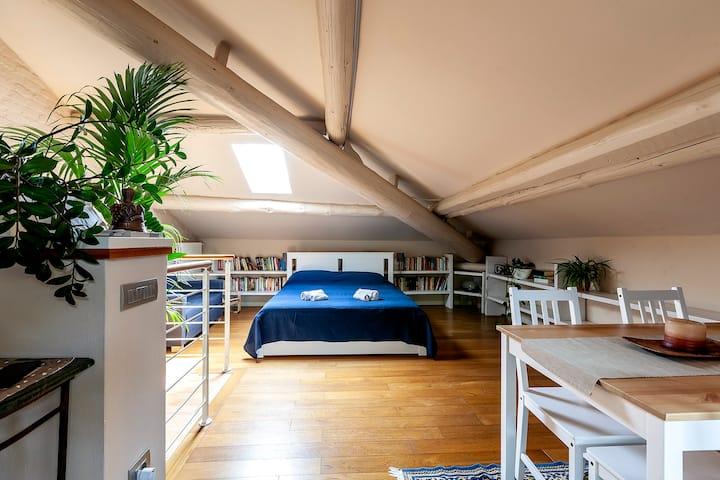 Romantica mansarda con terrazzino sul tetto