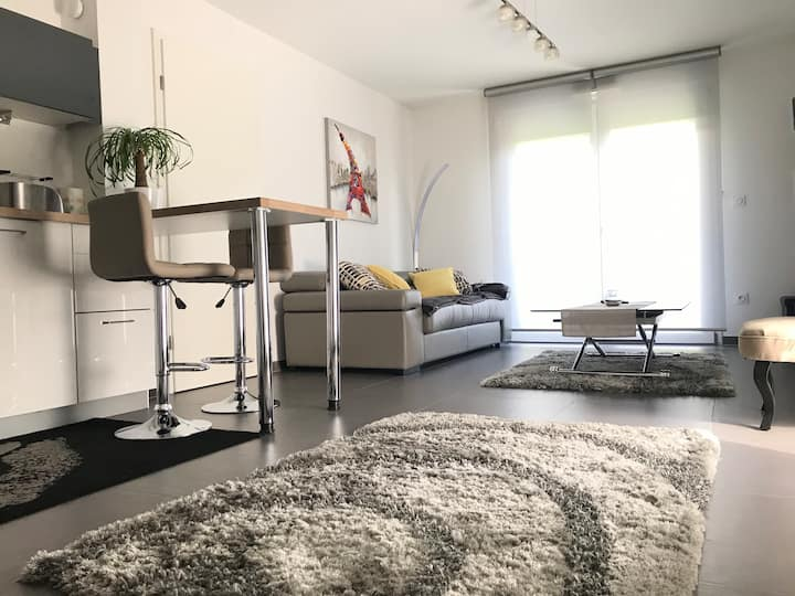 Charmant Appartement à Strasbourg, Robertsau