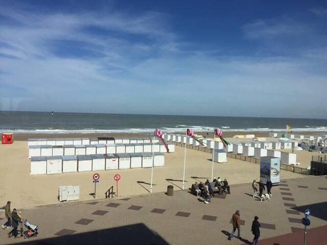 Aangenaam appartement op de zeedijk