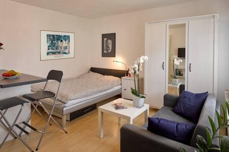 1-Zimmer-Apartment Heßdorf (bei Herzogenaurach) - Heßdorf