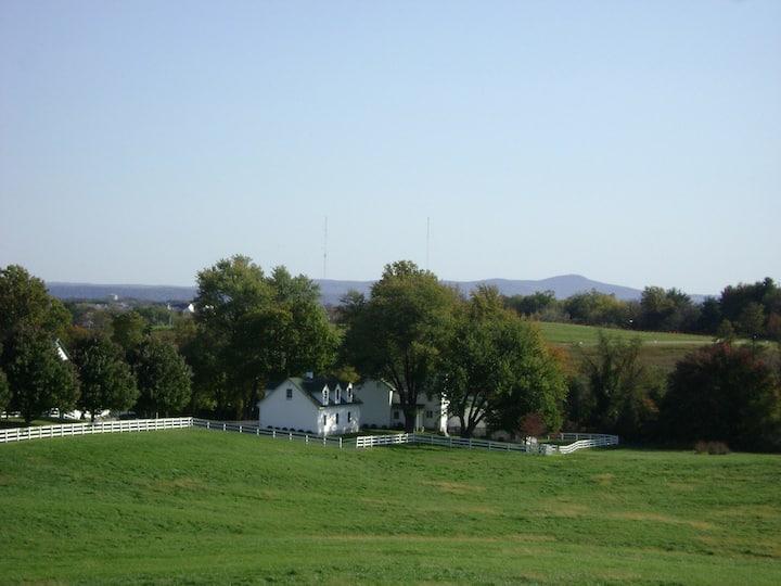 Beautiful Historic Farmhouse 4400 Sqft