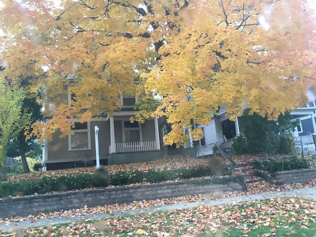 Charming 20th Century Home Adjacent to Downtown - Grand Rapids - House