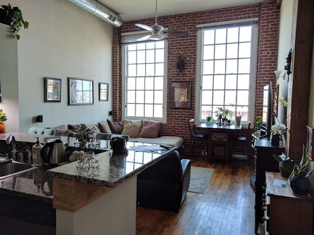 Beautiful Quiet Dog-Friendly Downtown Condo - Roanoke - Apartament