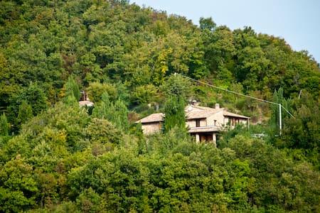 Urbino B&B Calmancino delle Selve - Urbino