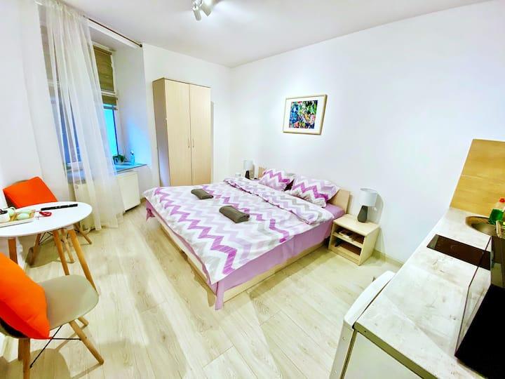 Yifair11 温馨舒适的小屋  市中心  靠近老城和卡齐米日 自助入住 交通便利