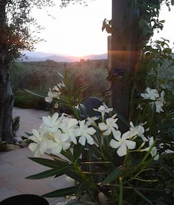 The home in the garden of the olive - San Casciano in Val di pesa