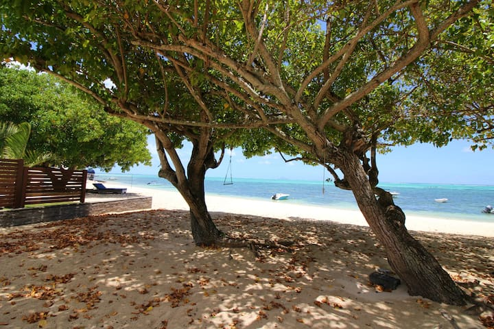 Traditional creole villa right on the beach - Roches Noires - Villa