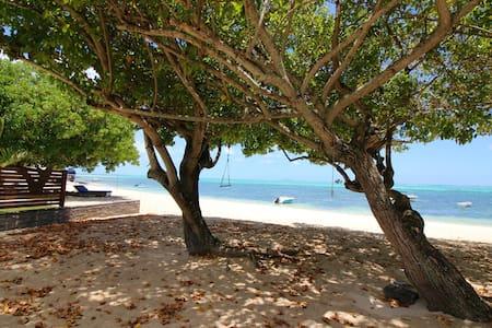 Traditional creole villa right on the beach - Roches Noires - Villa