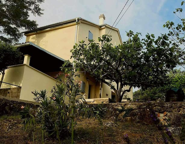 Casa Risika 226 - relaxing vacation with sea view