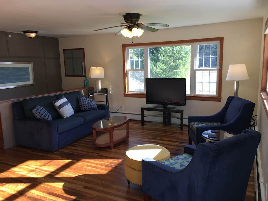 Living Room with full pull out sofa--new hardwood floors