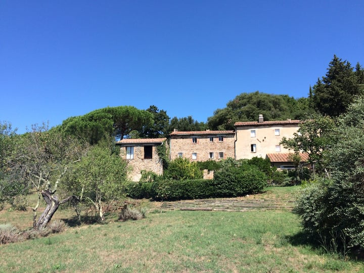 Tuscan country house podere Adarbia