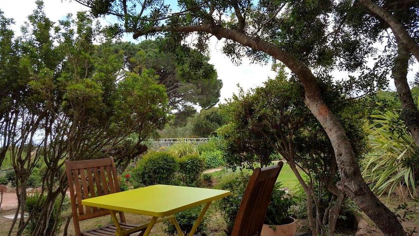 Studio avec piscine à Palombaggia - Porto-Vecchio - Apartament