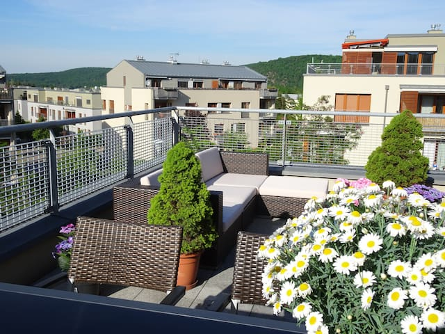 New roof-top terrace appt + garage /center 20min - Prague - Flat