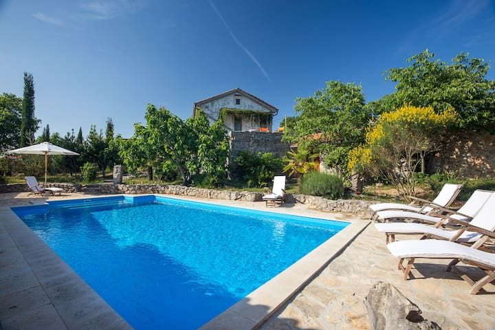 Luxurious villa with pool for six persons (13301) - Bajčići