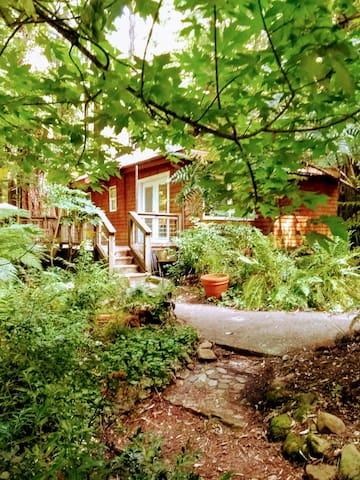 Cozy Cottage in the Redwoods, Samuel Taylor Park