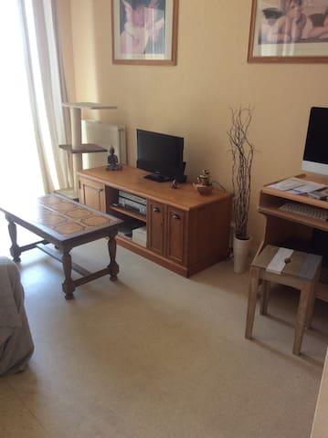 Appartement avec 1 chambre privé Agen centre - Agen - Pis