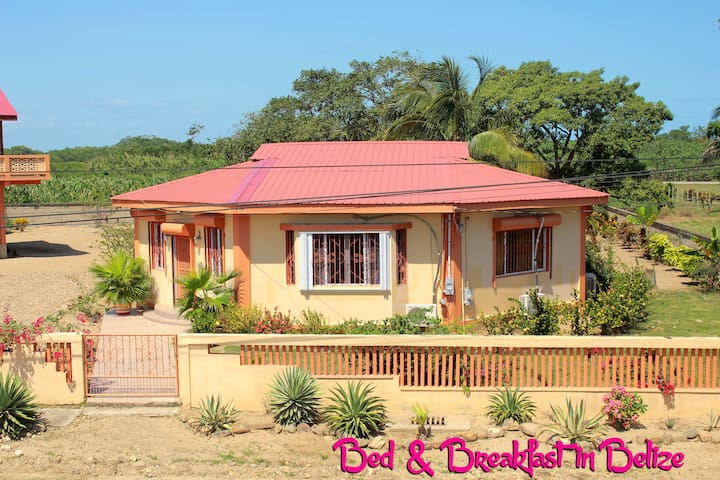 Bed and Breakfast in Belize - Dangriga - Bed & Breakfast