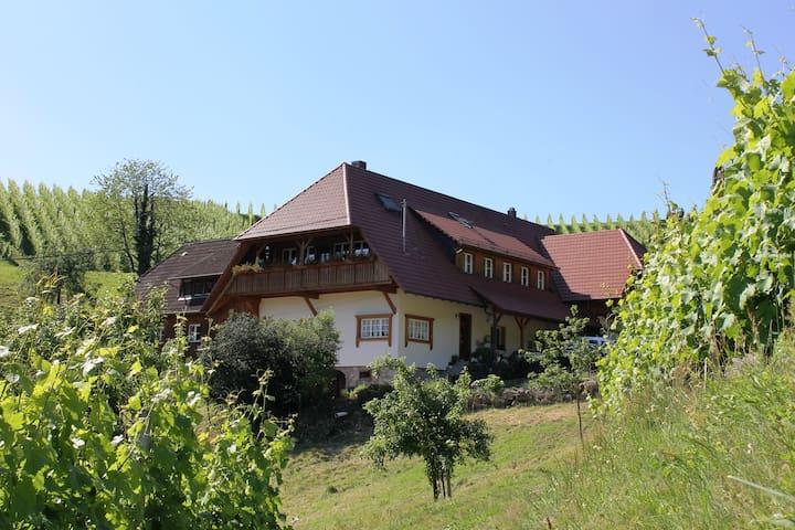 Winzerhof Armbruster - Gengenbach - Casa