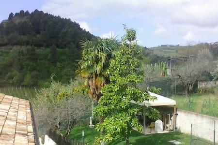 Casa nel verde - Foligno - House