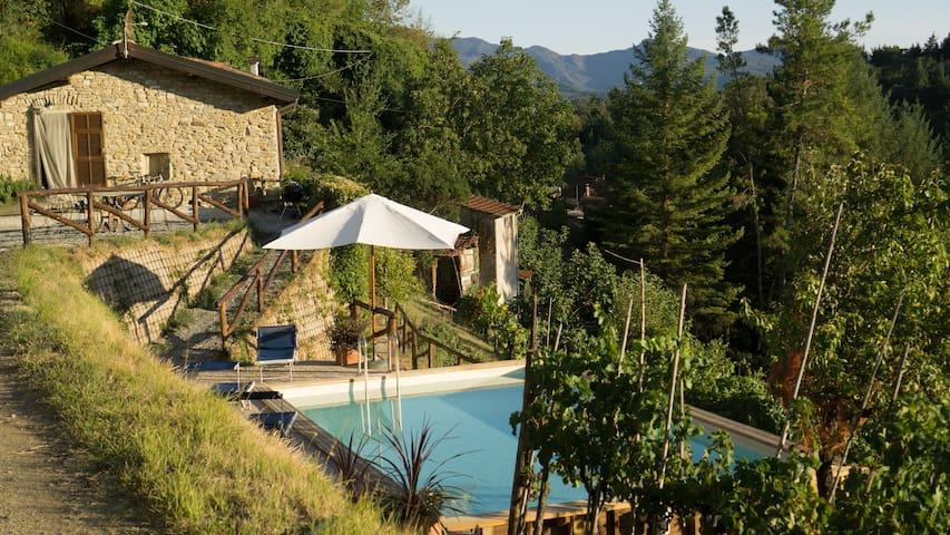 Casa Del'Orto a Beautiful Tuscan farmhouse