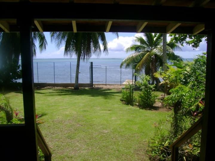 Maison individuelle, bord de mer, jardin tropical