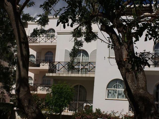 Tavira Garden with pool - 21