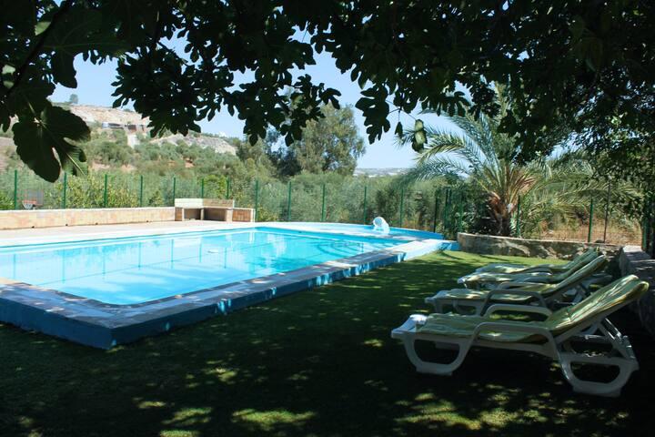 Casa Rural con piscina familiar y piscina infantil - Morón de la Frontera - Vacation home