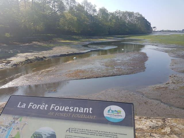 À 2 pas de la plage - La Forêt Fouesnant Kerleven