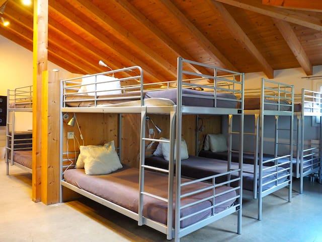 VIVA Hostel Chur  15-Bed Dorm - Chur - Dormitorio compartido