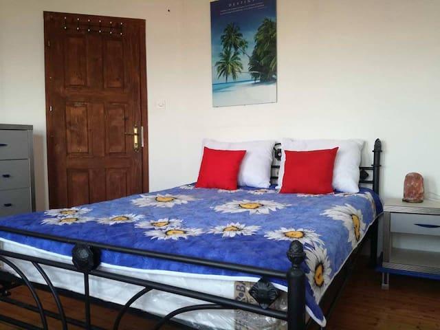 Villa Lenchevski Room 1