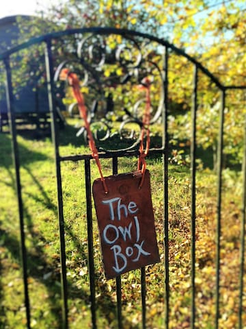 The Owl Box - Isington