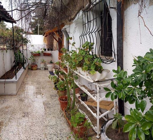 Casa Zitouna - Guest House Kef TN (BNB)