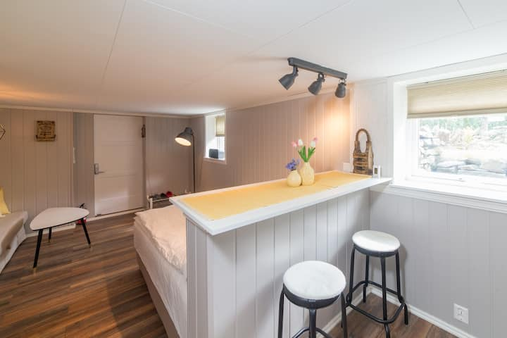 Private studio apartment in Gaupne - near Luster