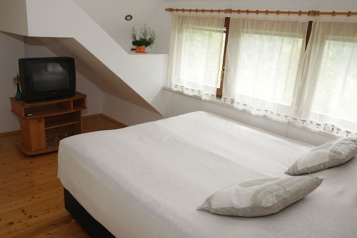 Lovely AC Apt for 2 near Bled - Bohinjska Bela - 아파트