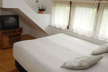 Lovely AC Apt for 2 near Bled - Bohinjska Bela