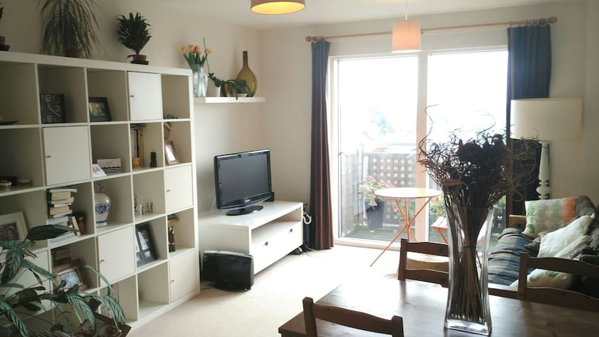One bedroom flat in west London. - Hounslow - Flat