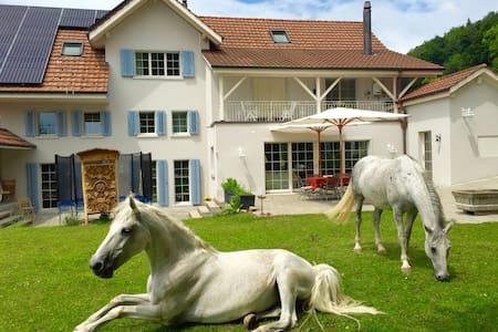 Luxury doubleroom @ Landhaus-Peters - Triengen - Villa