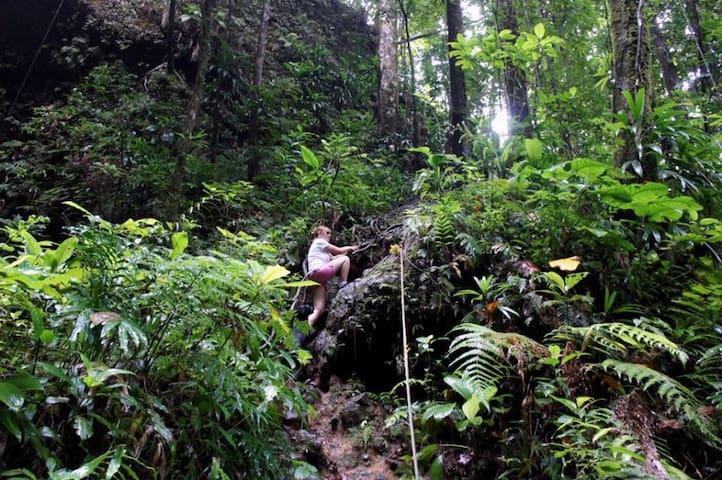 Nature,bord de mer+tour dans l'île:chutes d'eau...