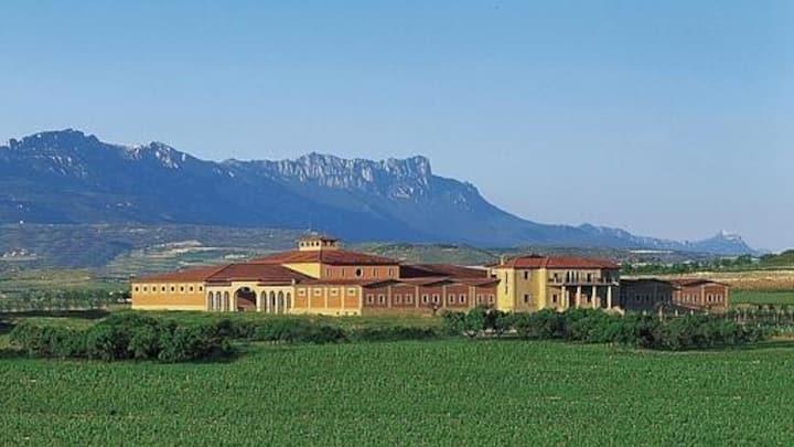 Centro Sol y vistas Sierra; recién renovada (259)