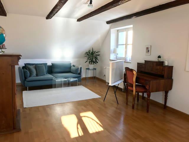 Zimmer über den Dächern & im Herzen Regensburgs