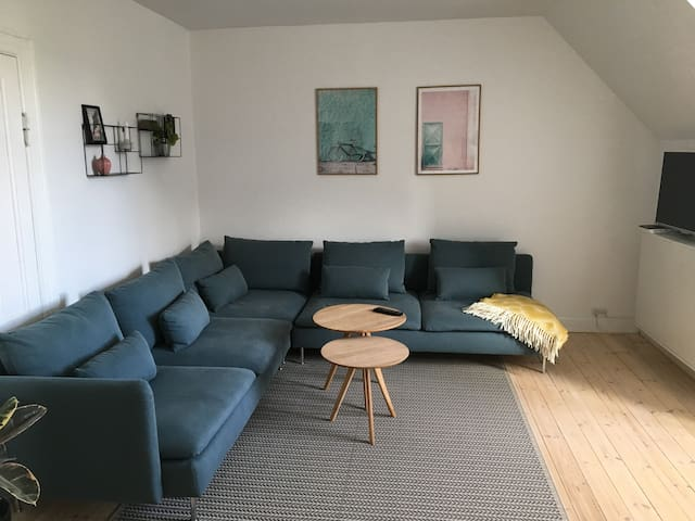 Spacious and cozy apartment, Frederiksberg