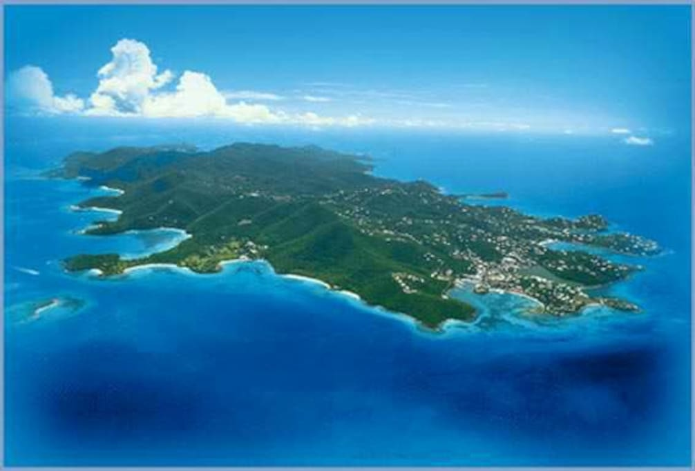 Located on the bustling beachy island of St Thomas, USVI